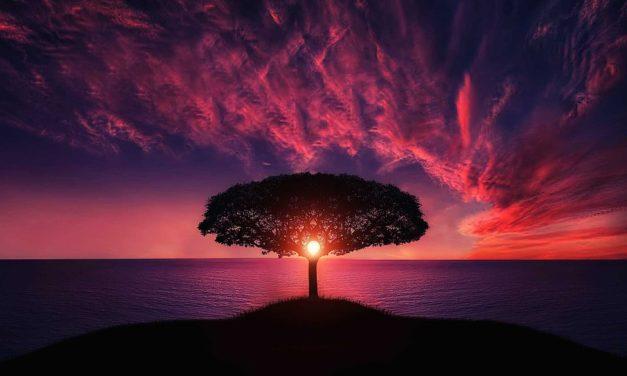 Opening The Door To The Healing Spirit